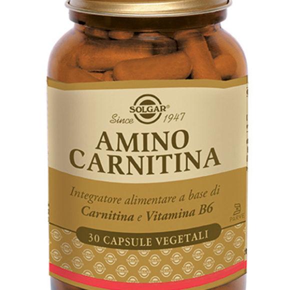 AMINO-CARNITINA