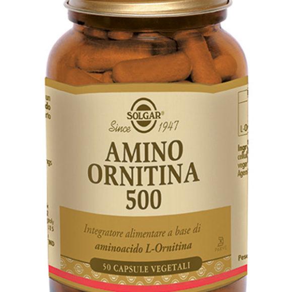 AMINO-ORNITINA
