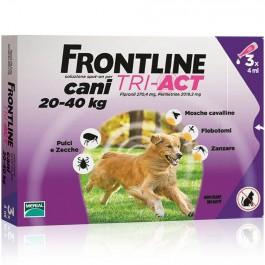 frontline-tri-act4